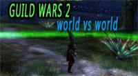 world vs world tips for guild wars 2