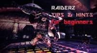 Tips for RaiderZ