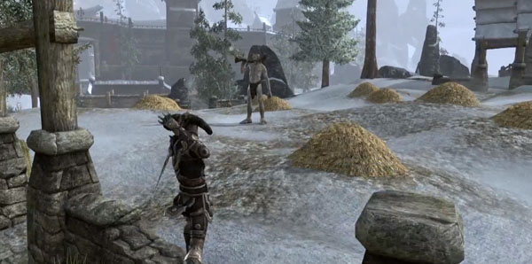 The Elder Scrolls Online Preview Screenshot 1