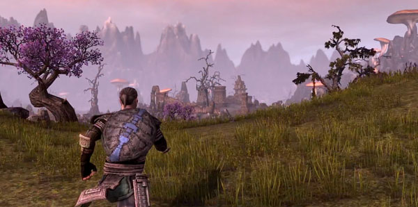 The Elder Scrolls Online Preview Screenshot 5