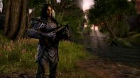 the elder scrolls online live streaming